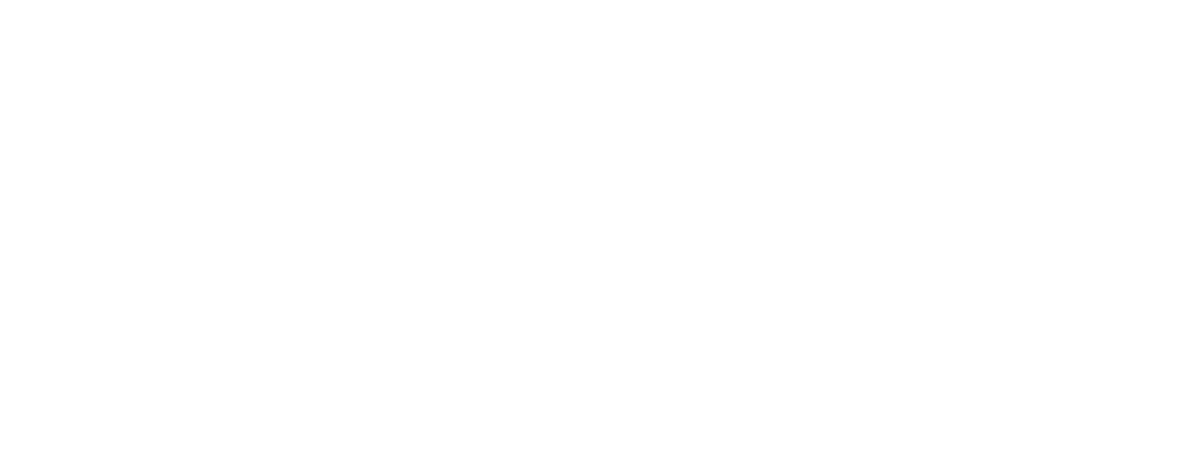 Continuum of Care Graphic